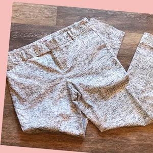 Calvin Klein little pants